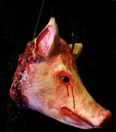 Slaughted Pig Head